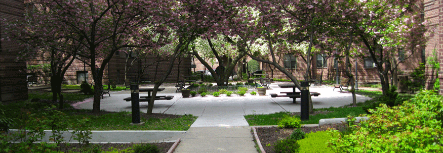 Dunolly Gardens courtyard